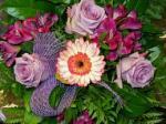 Atrakcyjna oferta pracy przy kwiatach w Holandii