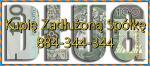 Zadłużone Spółki i JDG Pomoc 222/299/586 KSH KAS/US